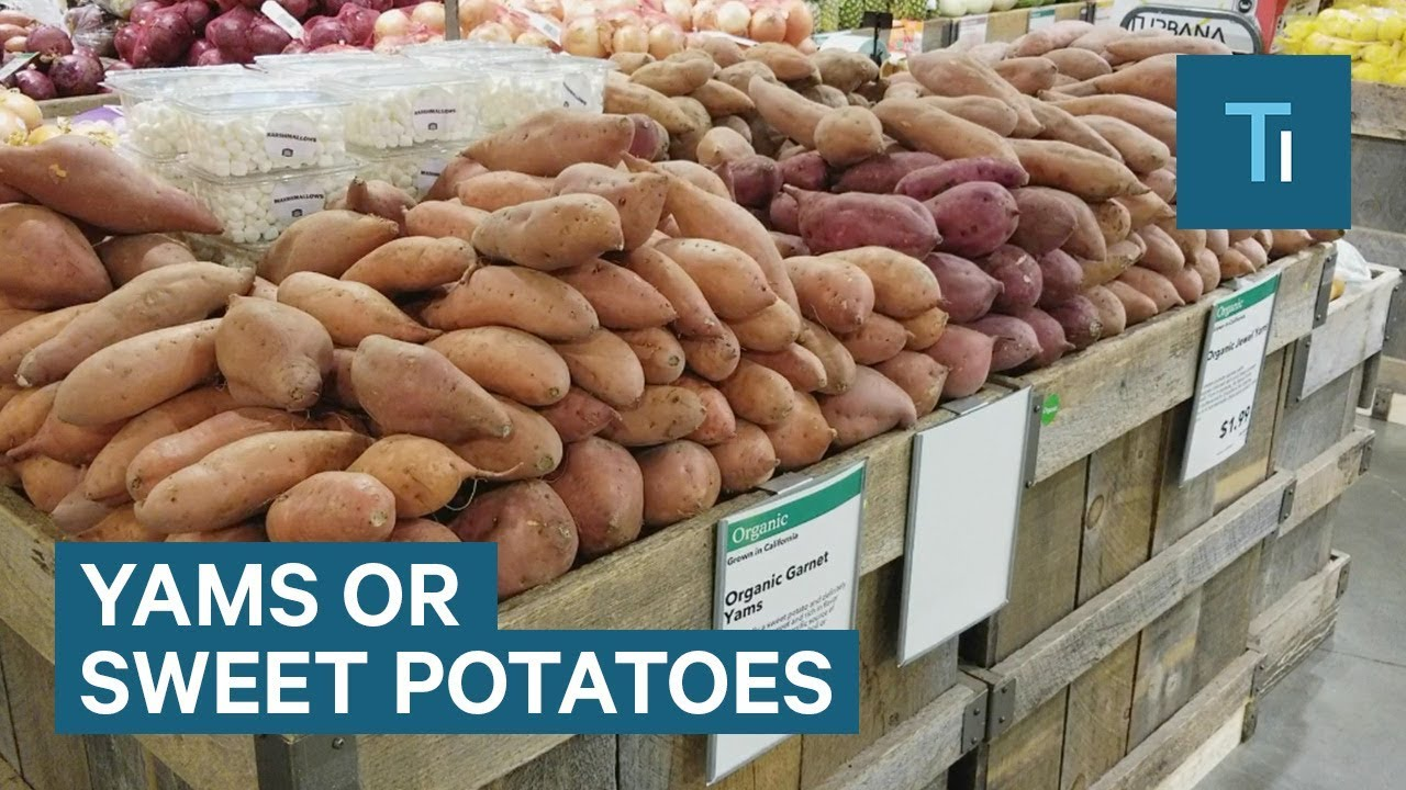 Download Difference Between Yams And Sweet Potatoes