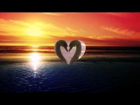 Dir gehört mein Herz (Hochzeitsversion)