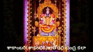 Sri kamalambike sive , Muttuswamy Dikshitar kriti , Sri Ragam