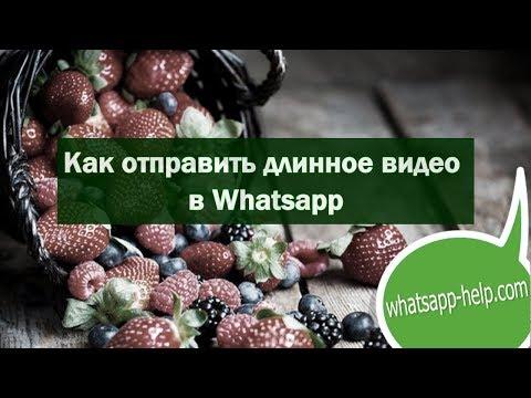 Как отправить длинное видео в Whatsapp