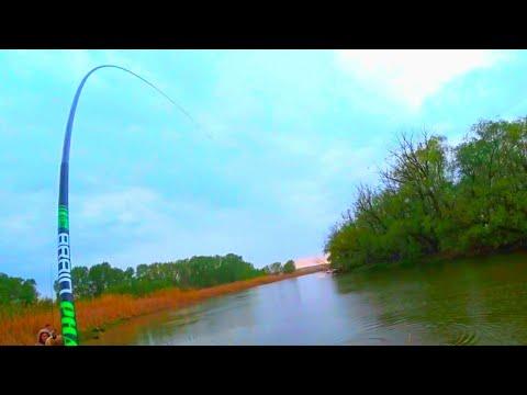 МАХОВАЯ ДУГОЙ ЕЛЕ ВЫТАЩИЛИ 15 МИНУТ БОРЬБЫ рыбалка на удочку 2020
