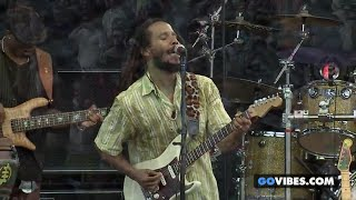 Give It Away - Ziggy Marley | Live at Gathering Of The Vibes (2014)