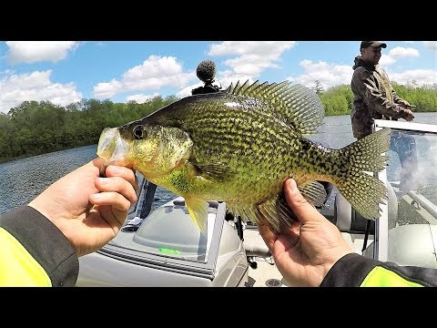 Wisconsin Summer Fishing!