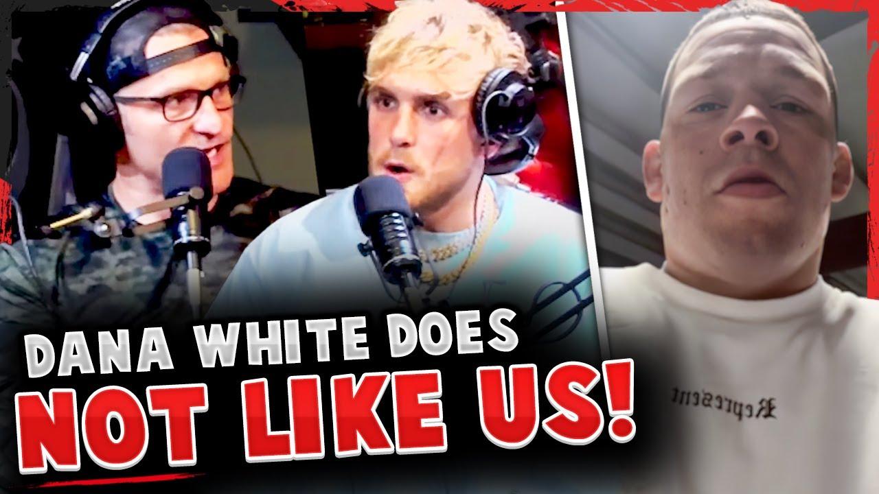Jake Paul & Stipe Miocic on Dana White DISLIKING them! Nate Diaz FIRES BACK at Gilbert Burns!