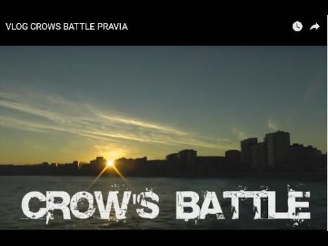 VLOG CROWS BATTLE PRAVIA