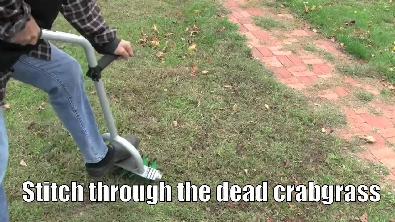 Best way to plant grass seed - How To Plant Grass Seed To Stop Crabgrass