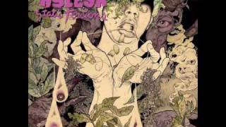 Kylesa - Unknown Awareness