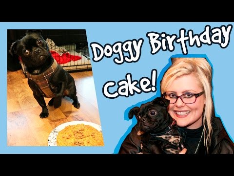 how-to-bake-a-dog-birthday-cake!-dog-cake-recipe!-plus-competition!