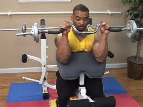 weight lifting exercises  weight lifting exercises ez