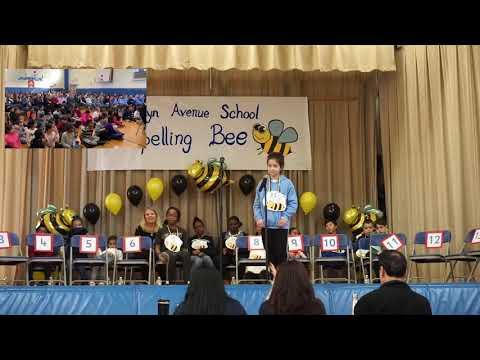 Brooklyn Avenue School Spelling Bee Win!