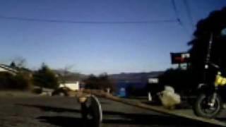 X-treme MONKEY BIKING!!!!!!!!