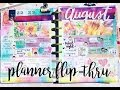 Happy Planner Flip Through
