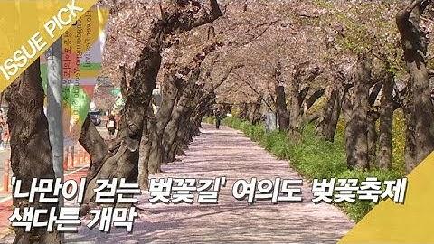'나만이 걷는 벚꽃길' 여의도 벚꽃축제 색다른 개막 [이슈픽]