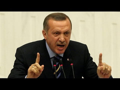Turkey retreating from neo-Ottoman foreign policy in ME – antiwar activist
