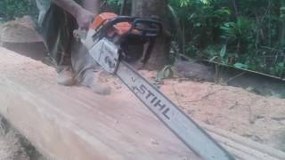 Chain Saw MS 381 Operating Part 2