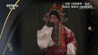 [典藏]京剧《四郎探母·坐宫》 表演:梅葆玖 梅葆玥| CCTV戏曲 - YouTube