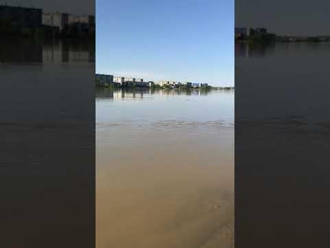 Река бия Бийск