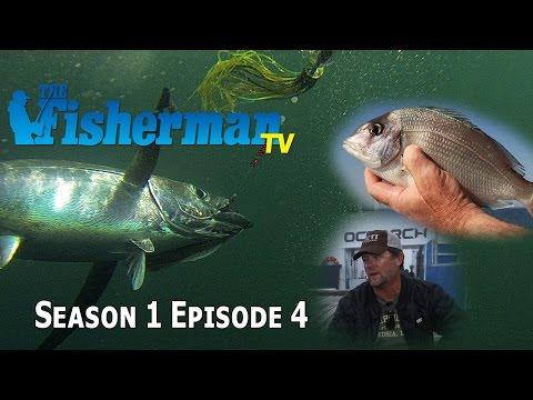 Fisherman TV Season 1 Episode 4, Shark Tagging, Tuna, Scup