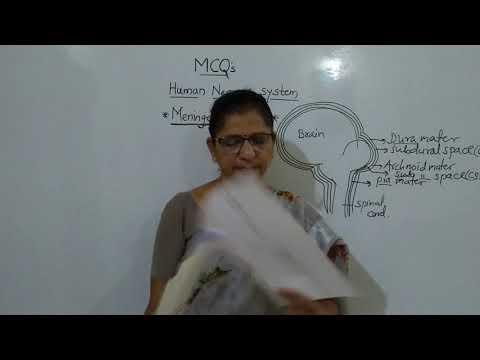 CET 6 MCQ: Meninges &CSF