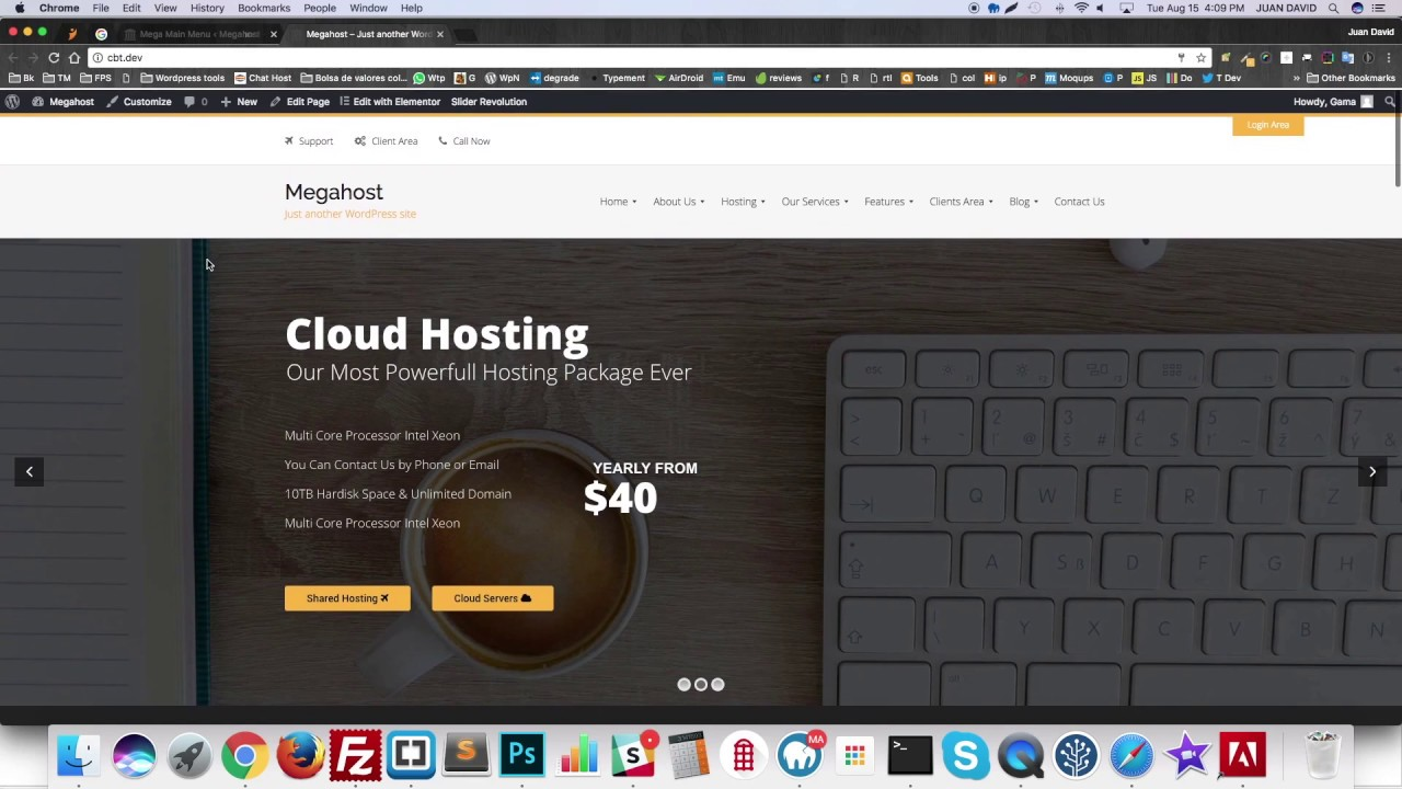 Hosting Wordpress Theme with whmcs - Megahost Install Demo Content