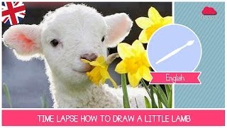 Time Lapse how to DRAW a little lamb by Fantasvale (ART)