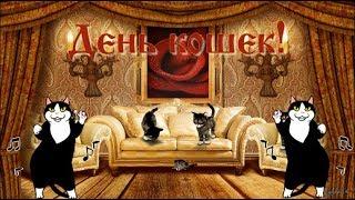 😺 🐱🐾Поздравление с Днем Кошек! 🐱🐾Видео-открытка