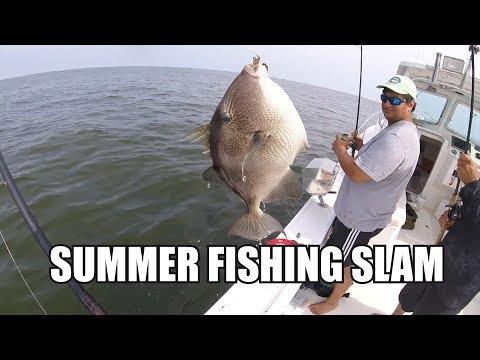 54lb striped bass released multiple 40lb plus stri for Captain d s grilled white fish filet