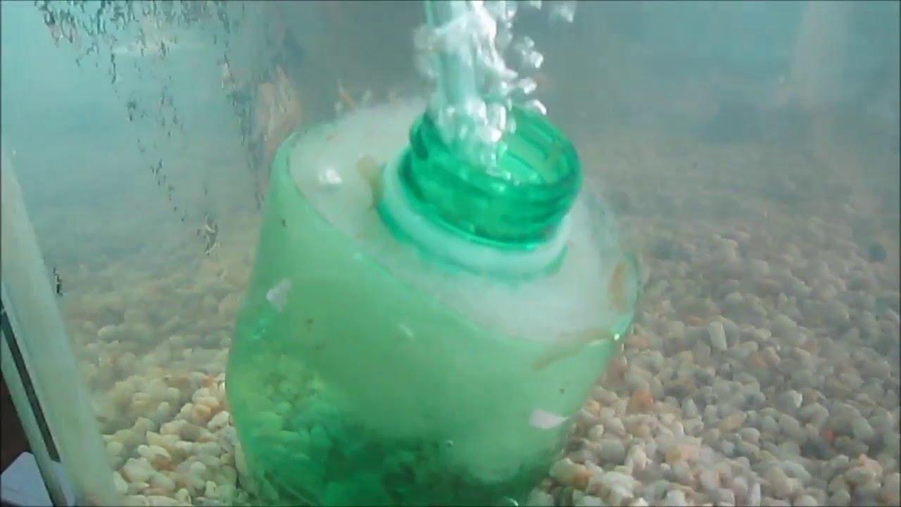 Como hacer un filtro casero interno para acuario facil for Filtro para pecera