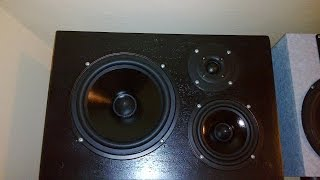 "Rebuilding the ""Black"" speakers with new drivers"