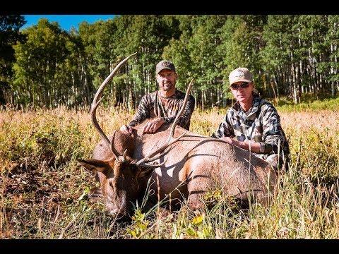 elk-stag-grizzlystik-success-pictures