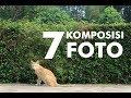 - 7 KOMPOSISI FOTO DALAM FOTOGRAFI
