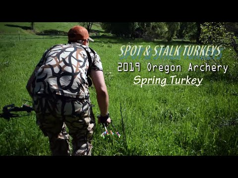 I SHOT MY FIRST TURKEY | 2019 Oregon Turkey Archery Hunting