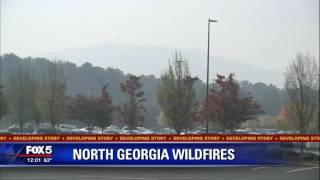 At least 20 wildfires in Southeast investigated as arson