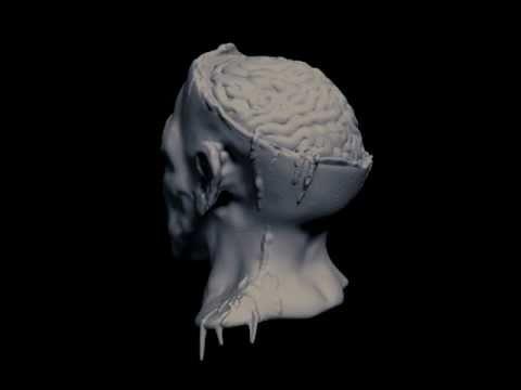 Zombie Head Sculpt 360 - Composited Coloring