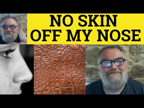 no skin of my nose essay