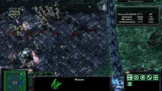 Starcraft 2 - Custom Game - Evolves