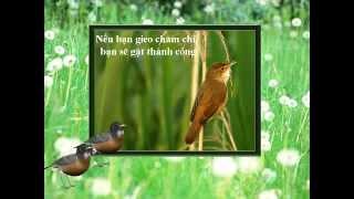 Danh ngôn GIEO & GẶT, Duy Hân, Thu-Hằng hoà âm & recorded