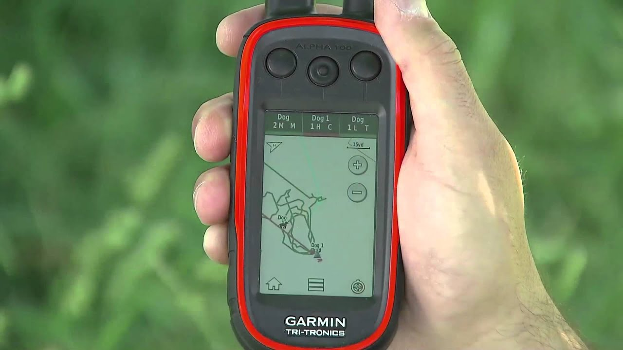 Tracking Dogs with the Garmin Alpha®