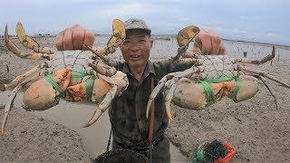大雨过后泰叔去收超级桶,没想到里面上演蟹章大战,大蟹战胜大章