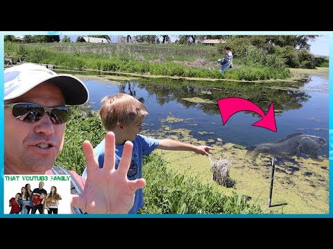 Searching For The Lake Monster / That YouTub3 Family