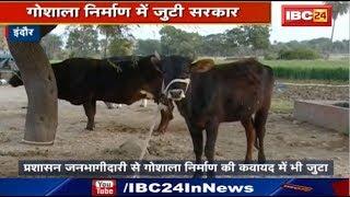 CM Kamal Nath का Mission 'गो सेवा' शुरू | Smart Gaushala निर्माण में जुटी सरकार
