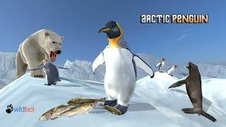 Arctic Penguin Simulator By Wild Foot Games - Android / iOS - Gameplay