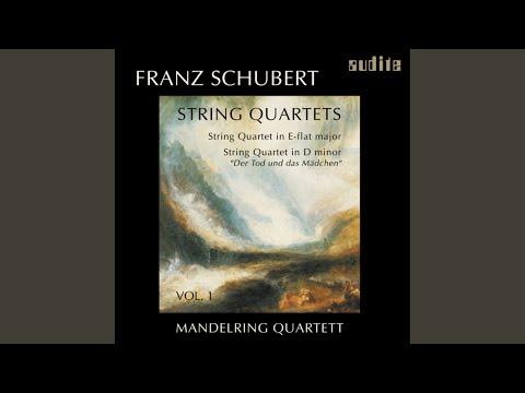 "String Quartet in D minor, D. 810 ""Death and the Maiden"": Allegro"