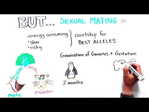 Asexual reproduction documentary film