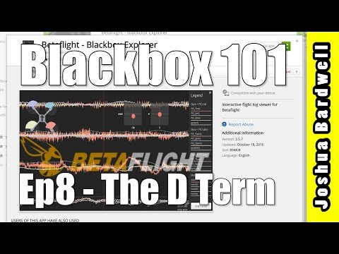 BLACKBOX 101 | Ep8 - The D Term