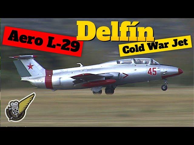 Aero L-29 Delfín - A Cold War Jet Fighter Trainer