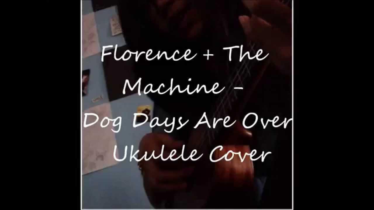 Dog Days Are Over Ukulele Cover