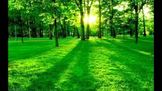 Telemann - Tafelmusik 2 part 4, Quatuor in D minor