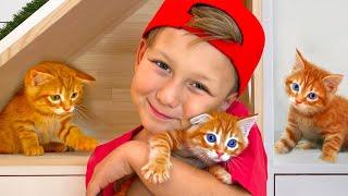 Сеня нашел маленького КОТЕНКА! Что Теперь Скажет Мама? Видео про Котенка смотреть онлайн в хорошем качестве бесплатно - VIDEOOO
