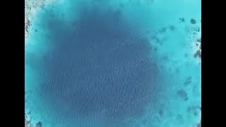 World's deepest blue hole in South China Sea   CCTV English